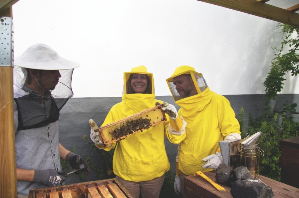 Beesharing Hamburg