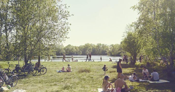 Wo sind die besten Badeseen Hamburgs? Der Boberger See gehört dazu. Foto: Philipp Schmidt