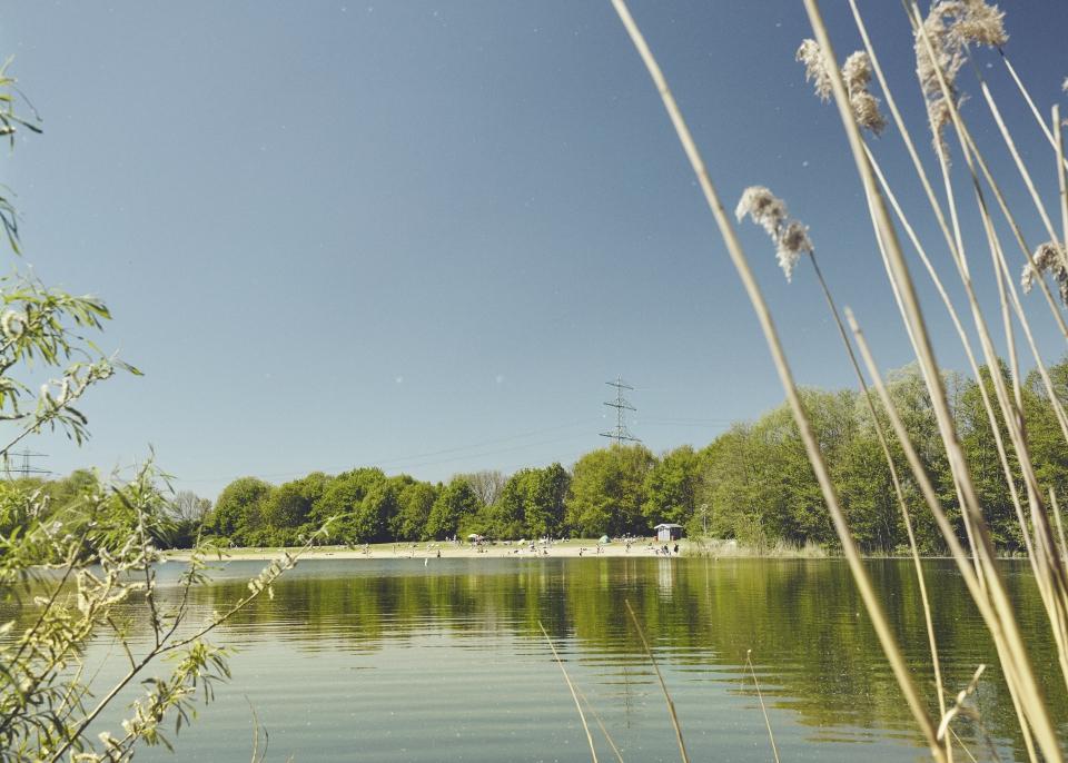 Wo sind Hamburgs beste Badeseen? Der See hinterm Horn gehört dazu. Foto: Philipp Schmidt