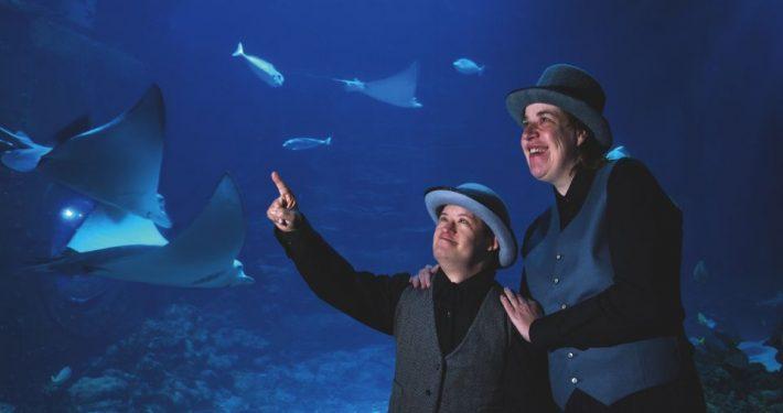 20.000-Meilen-unter-dem-Meer-Klabauter-Theater