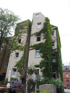 fürsorgeverein-wohnheim