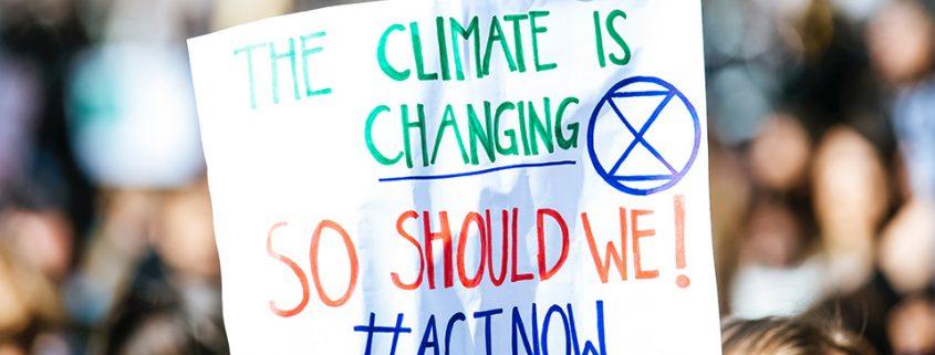 klima-nachhaltigkeit-hamburg-c-markus-spiske-unsplash