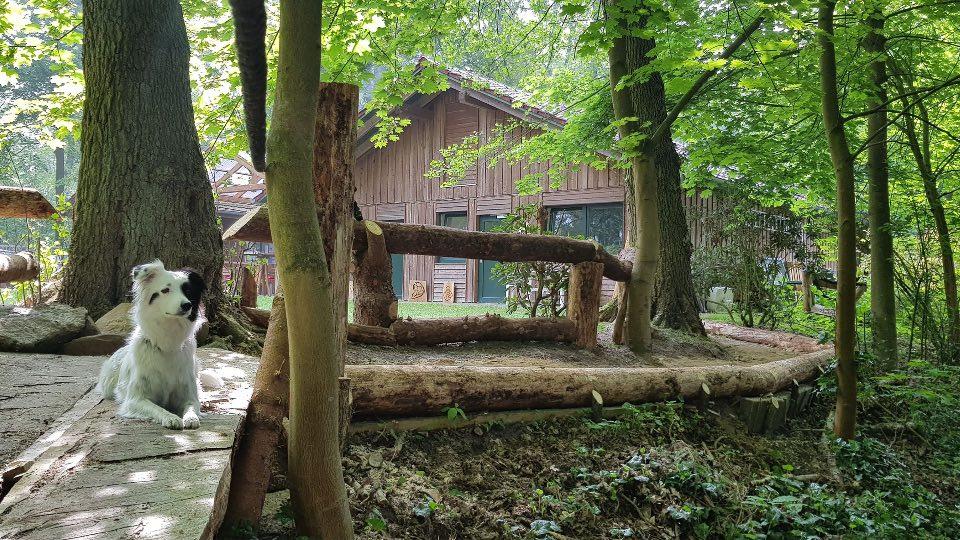 Camping Waldbad in Ebstorf in der Lüneburger Heide