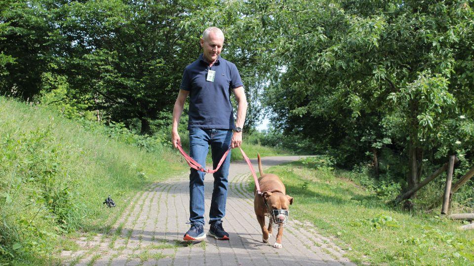 Ehrenamtlich mit Hunden Gassi gehen? Jap, das geht beim Hamburger Tierschutzverein (Foto: Hamburger Tierschutzverein)