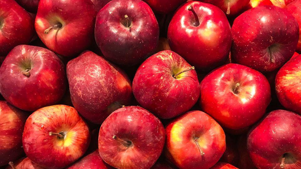 Äpfel gibt es in Hamburg regional und saisonal immer im Herbst (Foto: unsplash/Matheus Cenali)